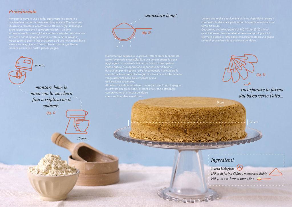 food-graphic-spongecake-enkir-flour-brochure2